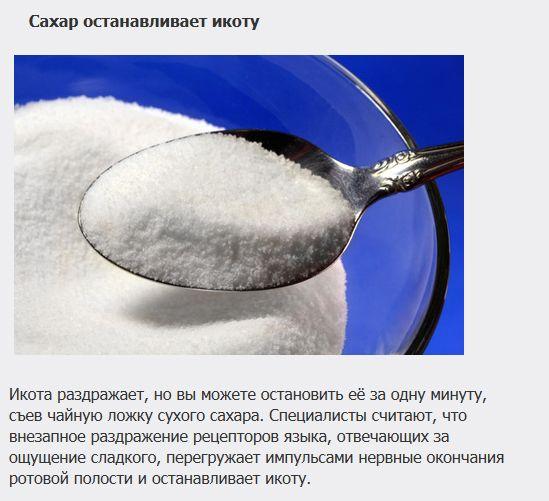 http://de.trinixy.ru/pics5/20121107/lechenie_04.jpg