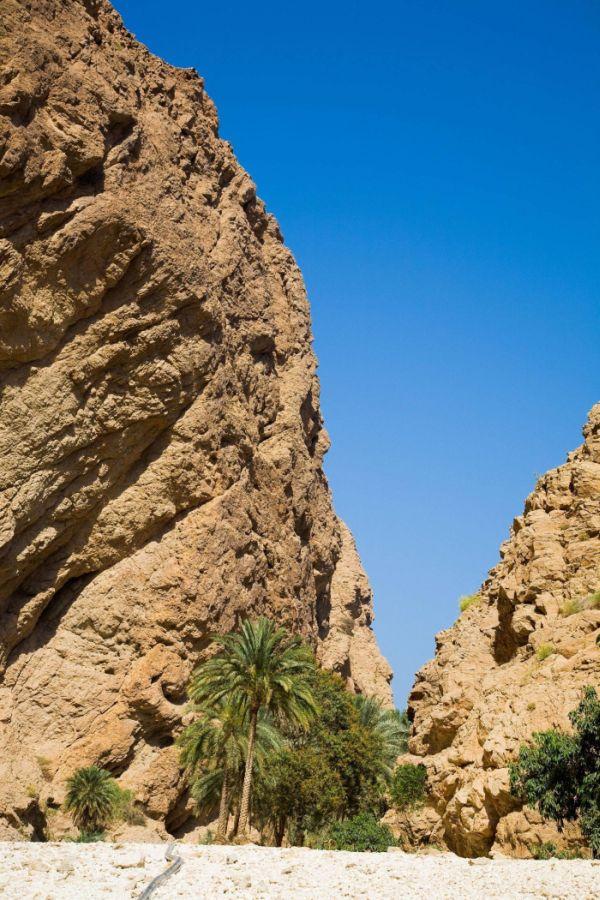 Райский оазис в пустыне (16 фото)