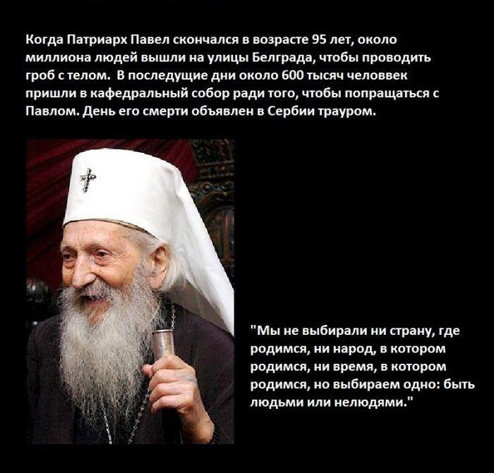 сербский патриарх павел фото