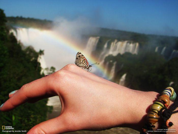 Удивительный мир, которого мы не замечаем (46 фото)