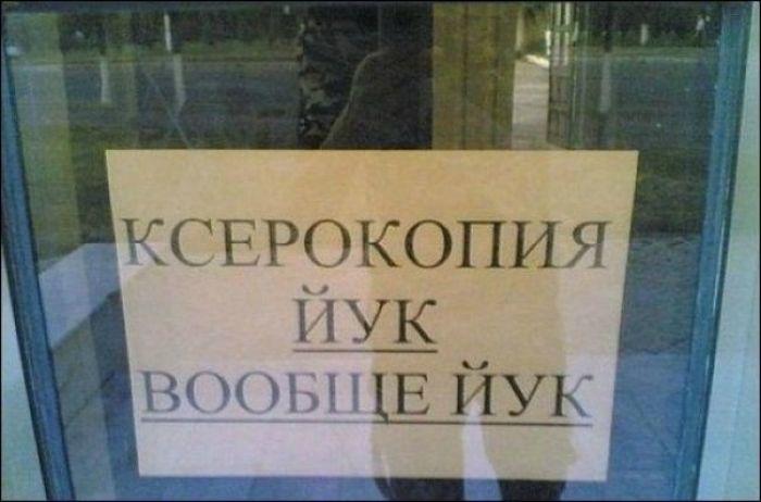 Смешные надписи (42 фото)
