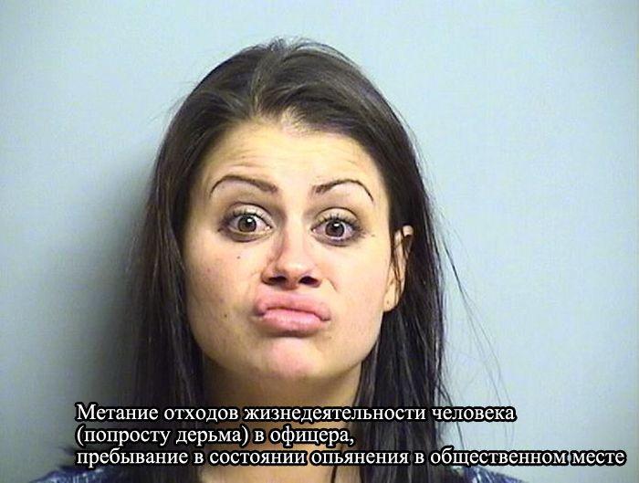Свежие магшоты с информацией о преступлениях (15 фото)