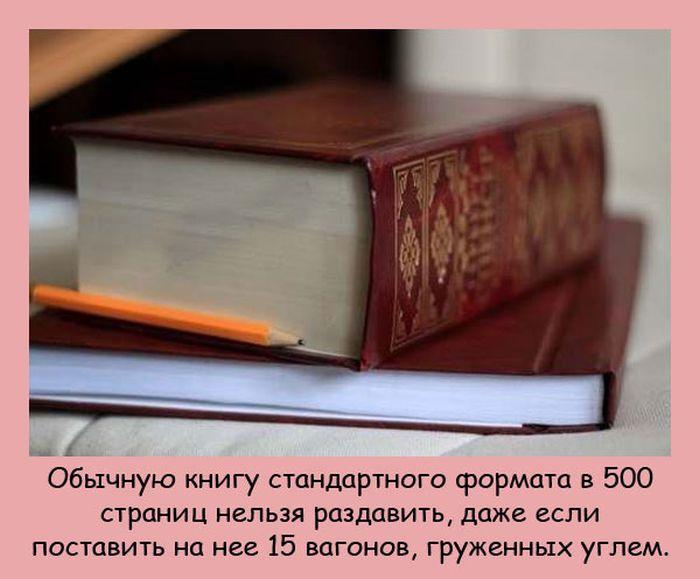 Интересные факты. Свежая подборка (20 фото)