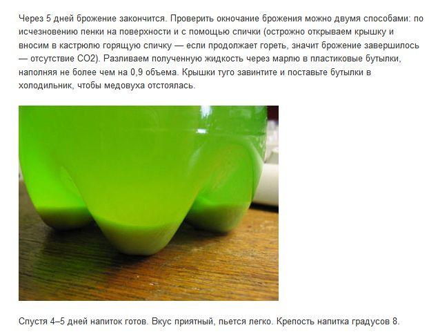 Как приготовить медовуху в домашних условиях (3 фото)