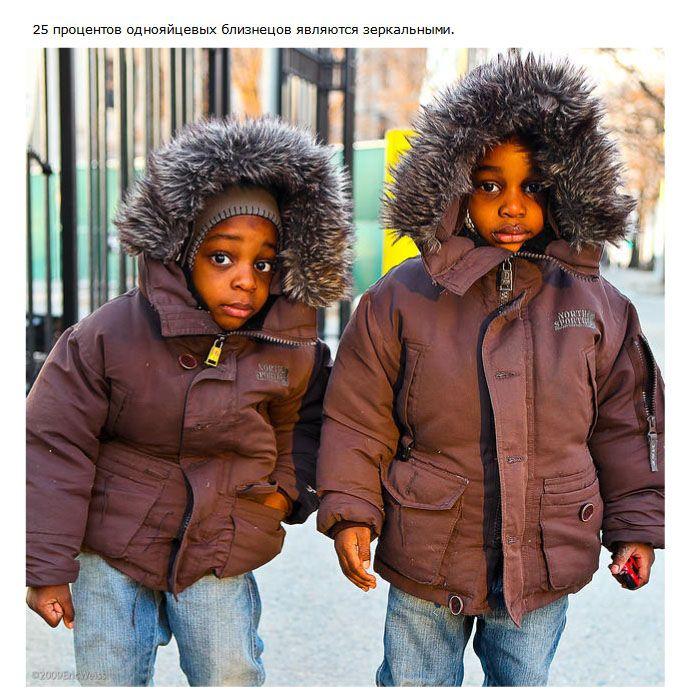 Интересные факты о близнецах (21 фото)