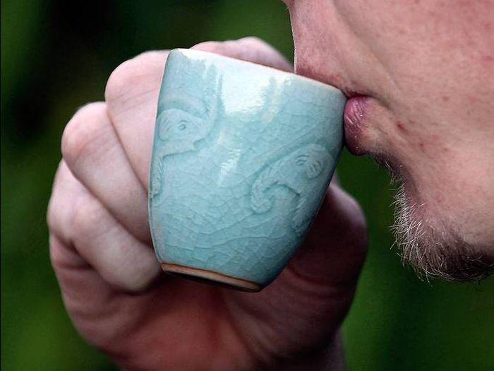 Необычный кофе, который делают из помета слонов (9 фото)