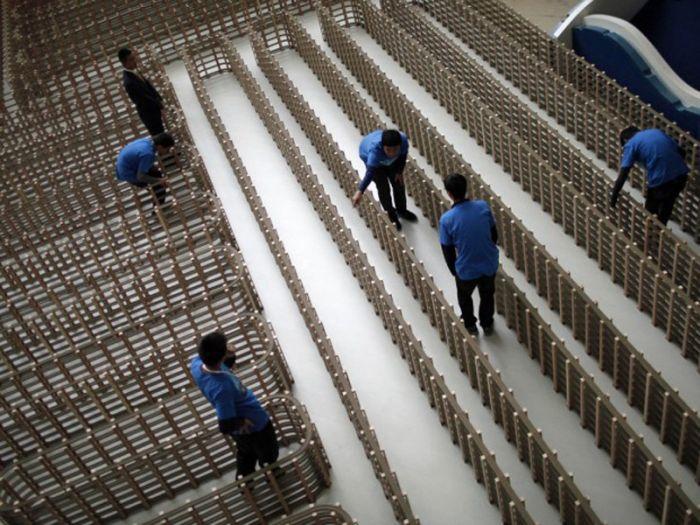 ТОП-15 самых странных рекордов за 2012 год (15 фото)