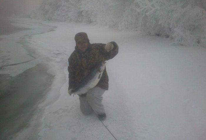 Невероятный улов на зимней рыбалке (3 фото)