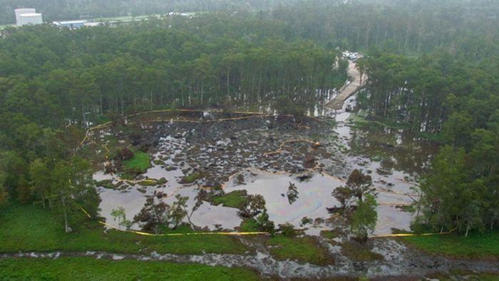 Необычное природное бедствие в штате Луизиана (7 фото)