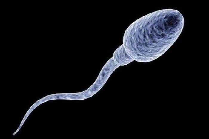ТОП-6 странных способов использования спермы (6 картинок)