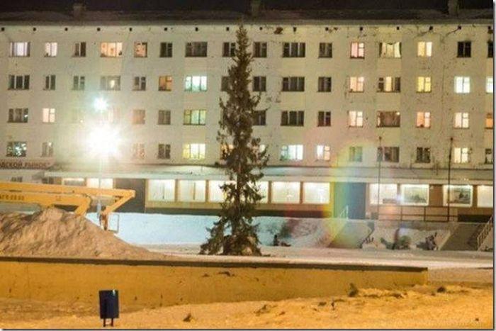 Новогодняя ёлка в центре небольшого городка (1 фото)