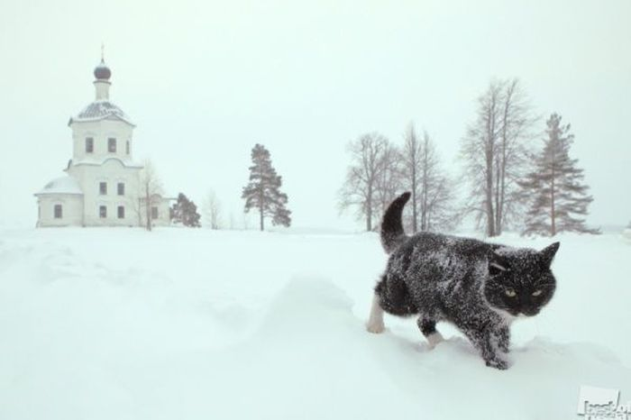 Top 40 meilleures photos de la Russie pour 2012 (40 photos)