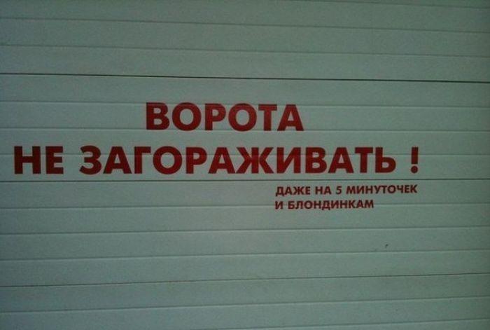 Смешные надписи (26 фото)