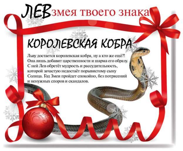 Какой змеей будешь ты в 2013 году (13 фото)