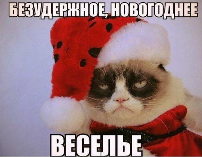 http://trinixy.ru/pics5/20121227/podb_01.jpg