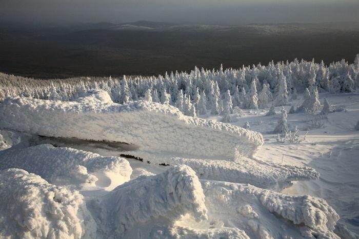 Удивительные снимки, сделанные на Урале (32 фото)