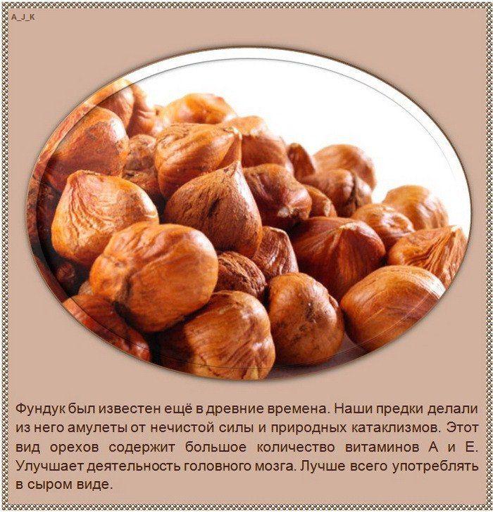 Интересные факты о разных видах орехов (10 фото)