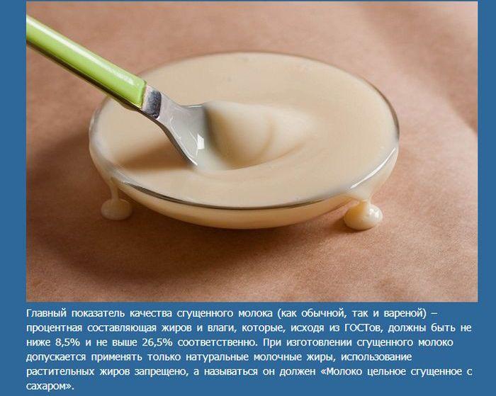 Факты, которые нужно знать о сгущенке (8 фото)
