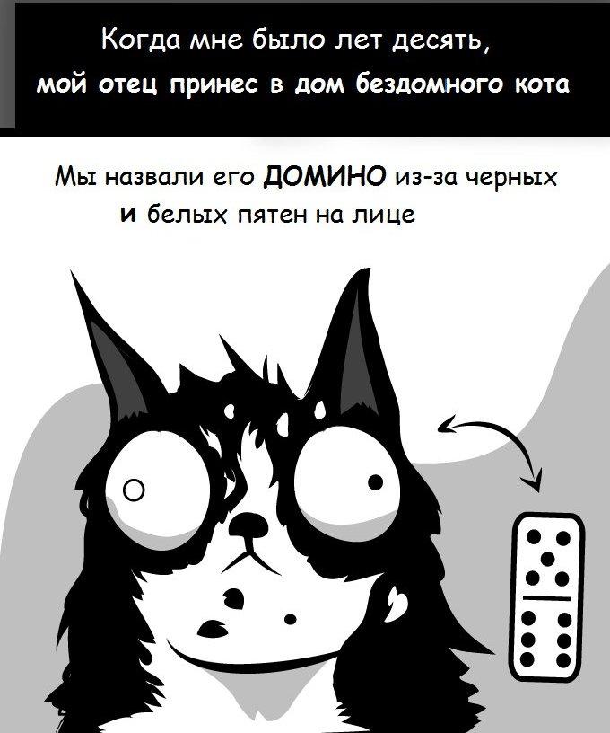 """Шикарный комикс про кота по кличке """"Домино"""" (2 картинки)"""