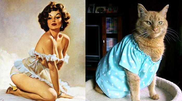 Симпатичные девушки и коты в стиле Пин-Ап (55 фото)