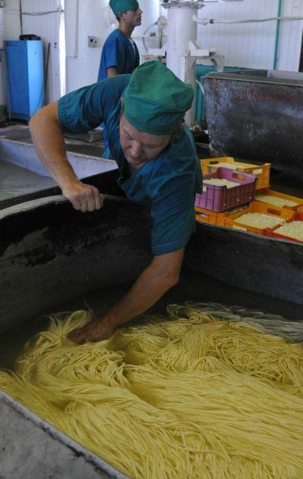 Как производится сыр сулугуни (18 фото)