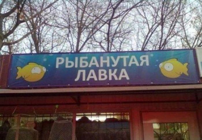 Смешные надписи (43 фото)
