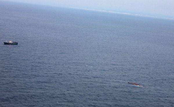 "Капитан утопил судно со словами ""Извините, пацаны"" (6 фото)"