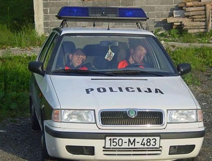 Прикольные полицейские снимки (82 фото)