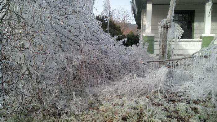 Шутники включили разбрызгиватель зимой (3 фото)