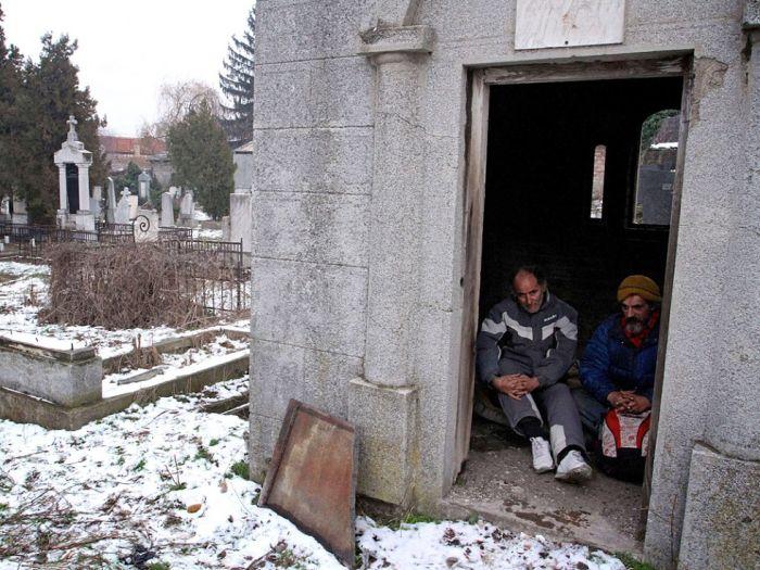 Жизнь в могиле (9 фото)