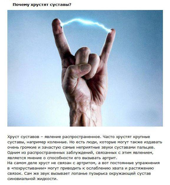 Разоблачение мифов об известных вещах (11 фото)