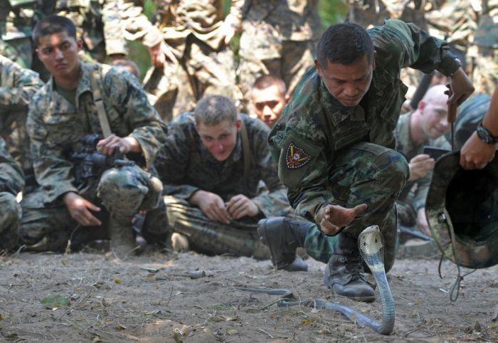 Учения в Таиланде (10 фото)