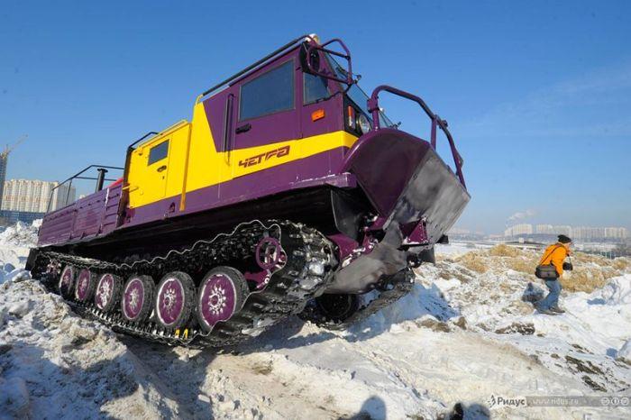 Комфортабельный танк от нашего производителя (15 фото)