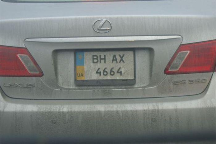 Блатные номера в Украине. Что почем? (9 фото)