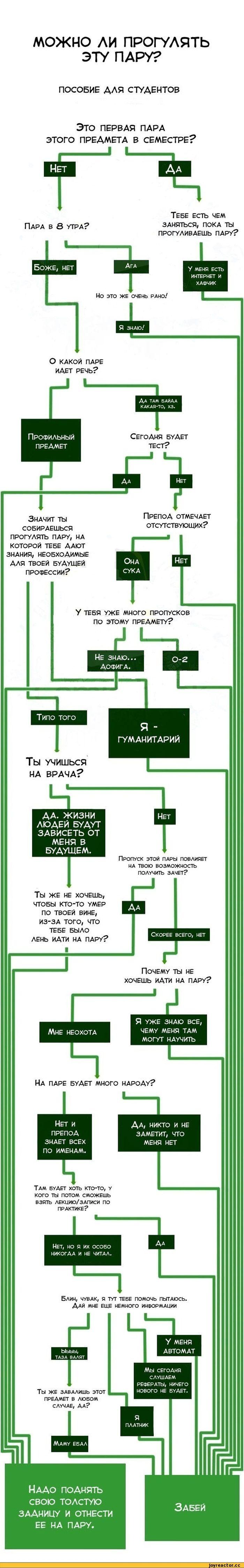 Основное руководство для студентов (1 картинка)