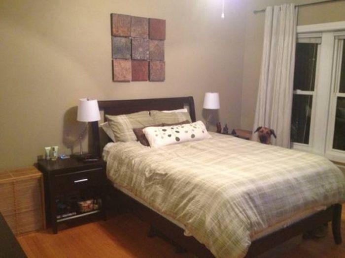 Кто продает эту квартиру? (6 фото)