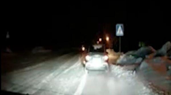 Полицейский рисковал жизнью, останавливая пьяного водителя (2 фото + видео)