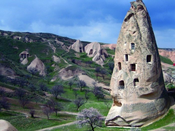 """Удивительные """"природные"""" дома (31 фото)"""