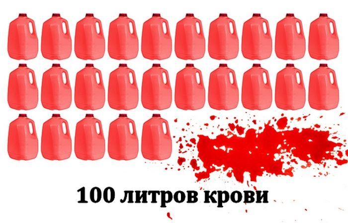 ТОП-10 самых кровавых ужастиков в мире (20 фото)