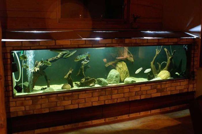 Тумба для аквариума из ДСП своими руками: пошаговая инструкция 34