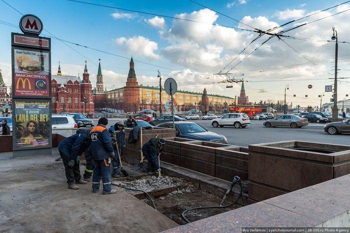 Москва станет цветущим зеленым садом (9 фото)