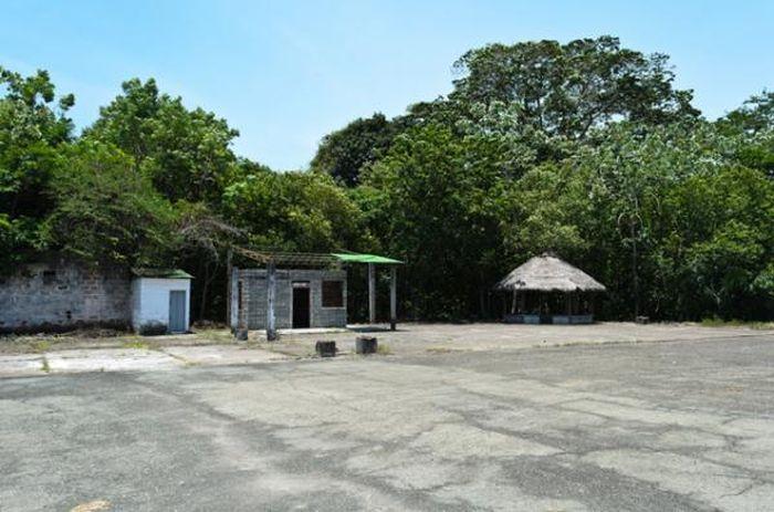 Сафари-парк на землях, которые принадлежали наркобарону Пабло Эскобару (15 фото)