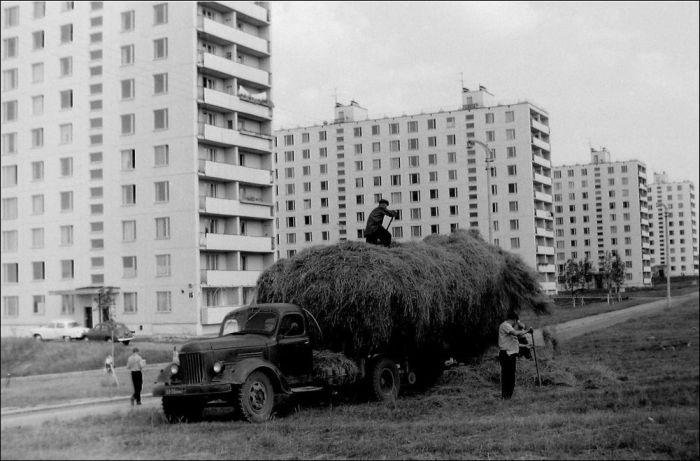 Архивные и неопубликованные фотографии юго-запада Москвы (40 фото