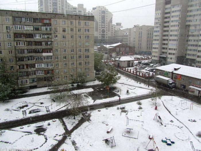 Алтайский край неожиданно завалило снегом (11 фото + видео)