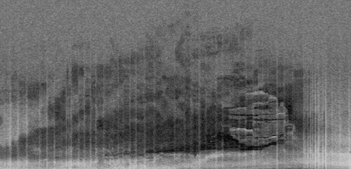 Аномалии океанских глубин (5 фото + текст)