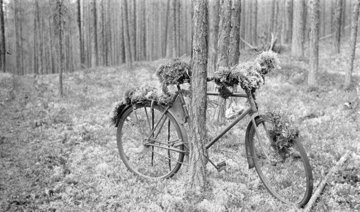 Архивные снимки Финляндии во Второй Мировой Войне (49 фото)