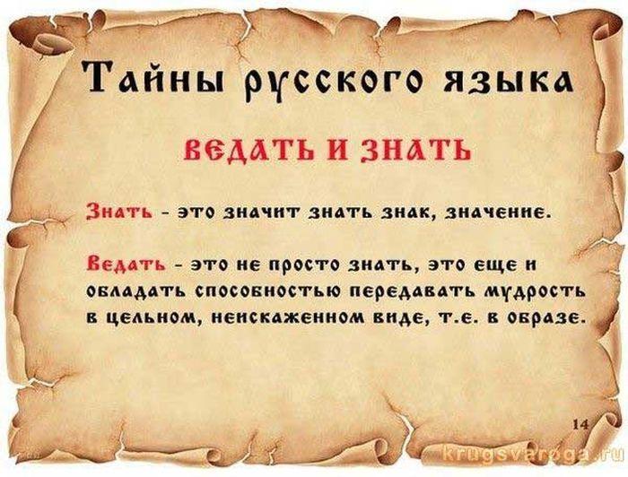 Факты о русском языке (14 картинок)