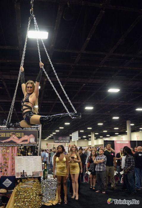 """Фестиваль порноиндустрии """"Exxxotica 2013"""" (50 фото)"""