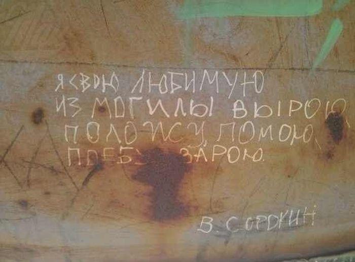Смешные надписи (55 фото)