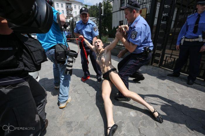 Реакция FEMEN на новость о разводе Владимира Путина (19 фото + видео)
